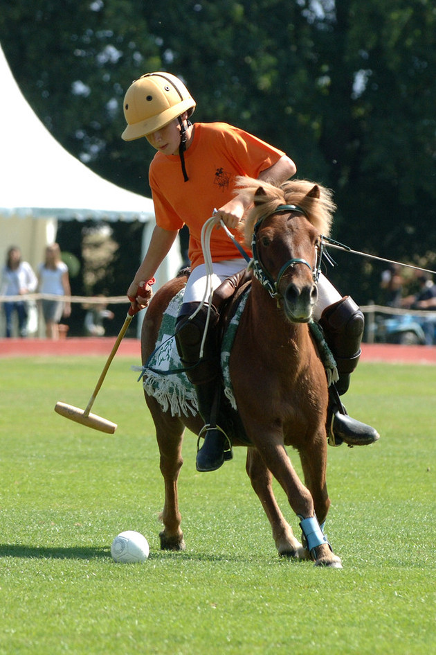 Pony exhibition game during the JLC Polo Masters