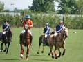 SPA Youth Camp & Swiss Junior Polo Championship 2015