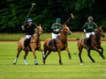 Swiss Low Goal Polo Championship 2018