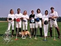 Synergy Polo Team